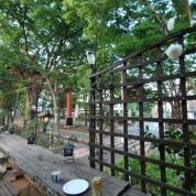 氷川参道の家