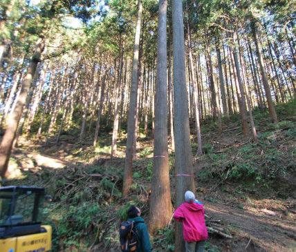 Sun&Tree…集う家
