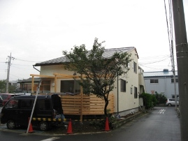 2008-12-29-8