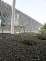 2007-07-18-2