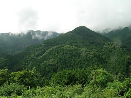 2007-08-09-1