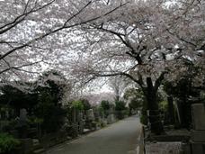 2008-04-03-2