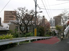 2008-04-03-7