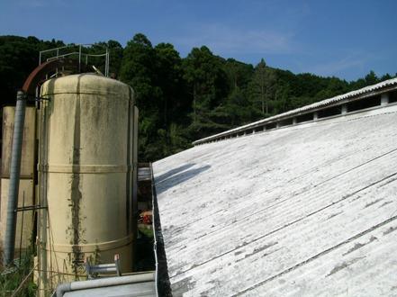 2010-08-25-1